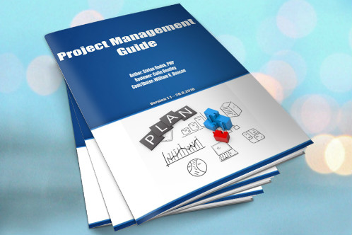 Projektmanagement-Guide